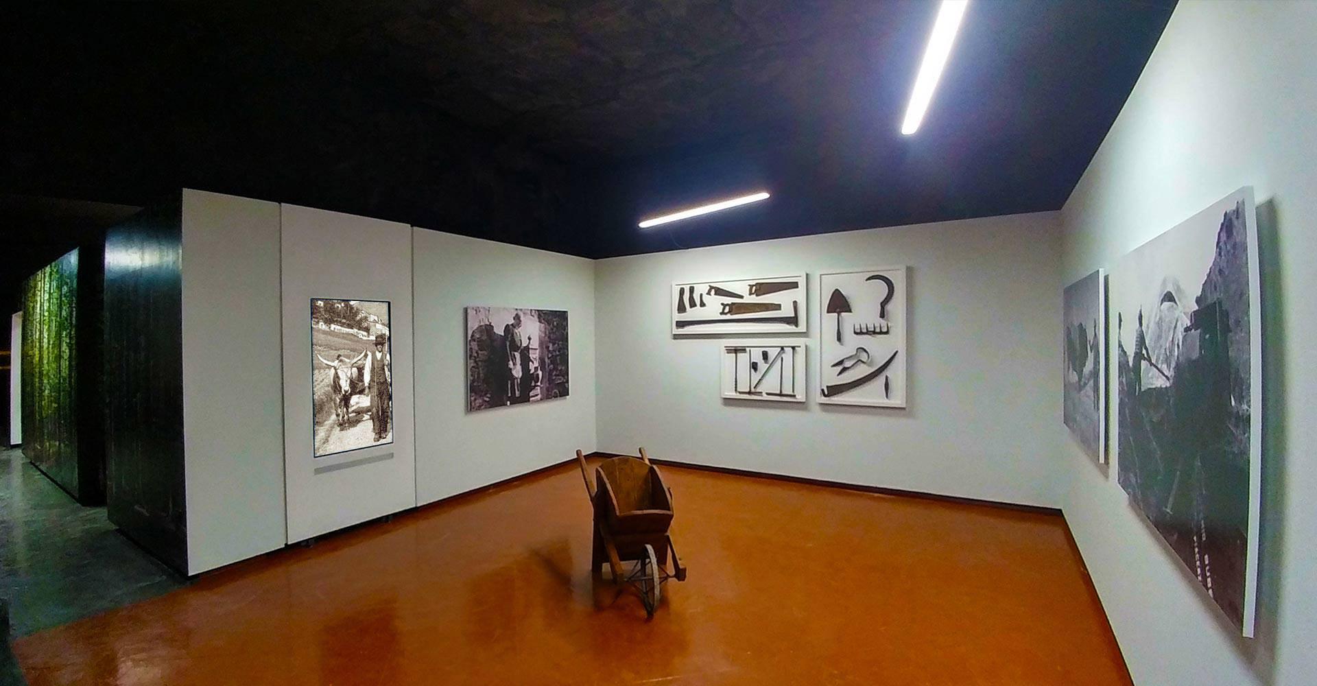 museo_castellazzara1