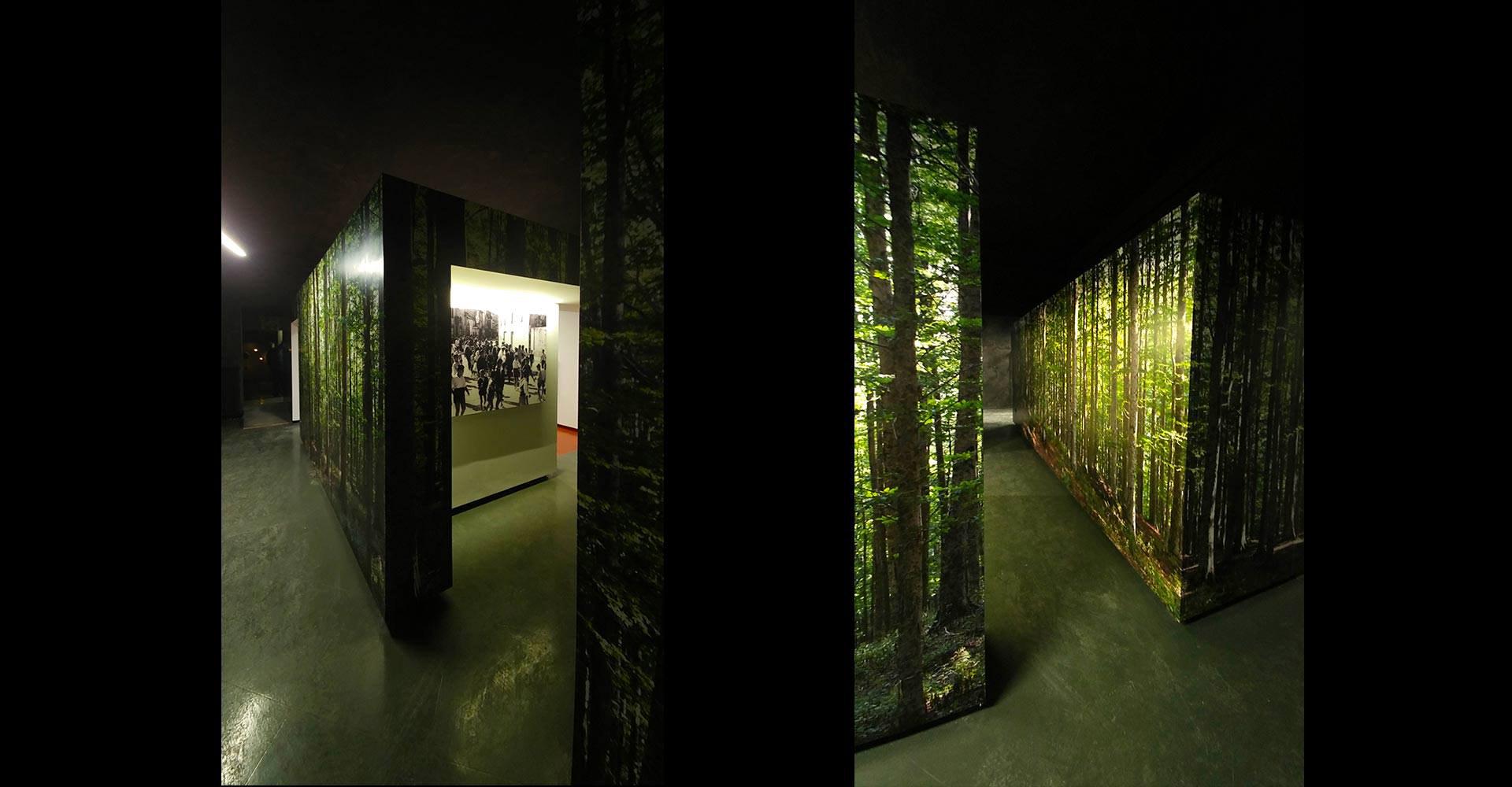 museo_castellazzara3