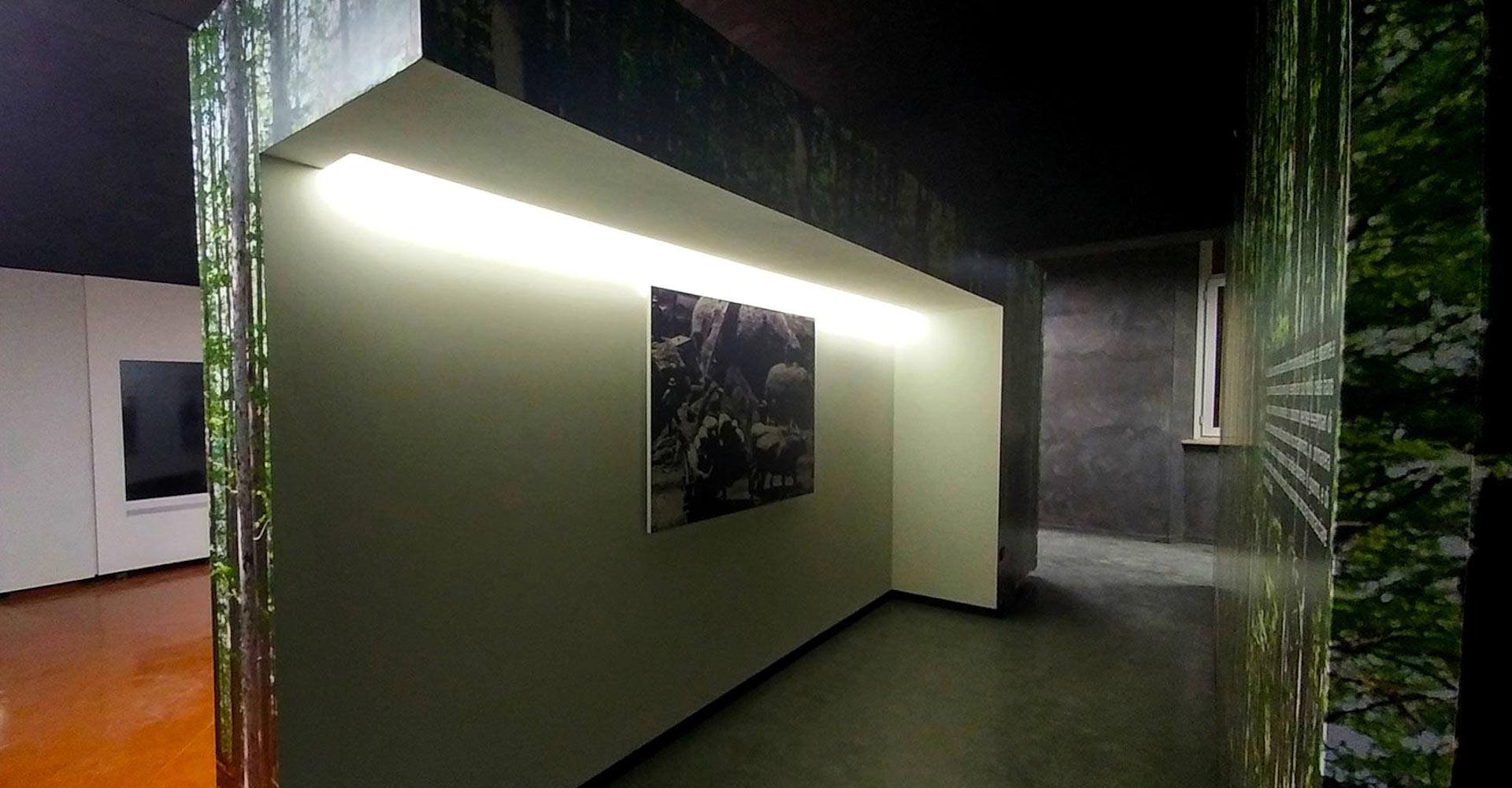 ultravioletto_museo_castellazzara8